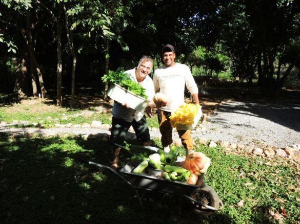 Consultor da Nomad Brasil auxilia colheita de verduras na Estância Mimosa