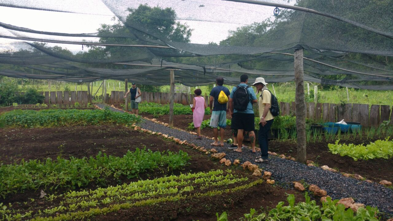 Comitiva de Chefs visita a Estância Mimosa